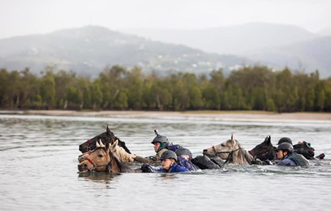 horses_in_the_water